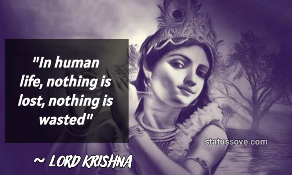 In human life, nothing is lost, nothing is wasted