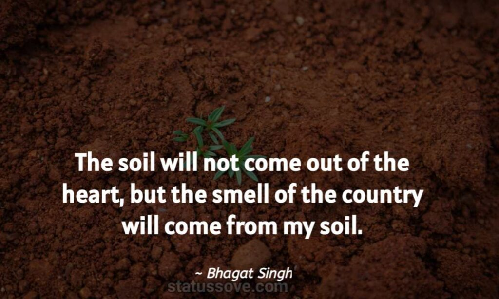 The soil out from