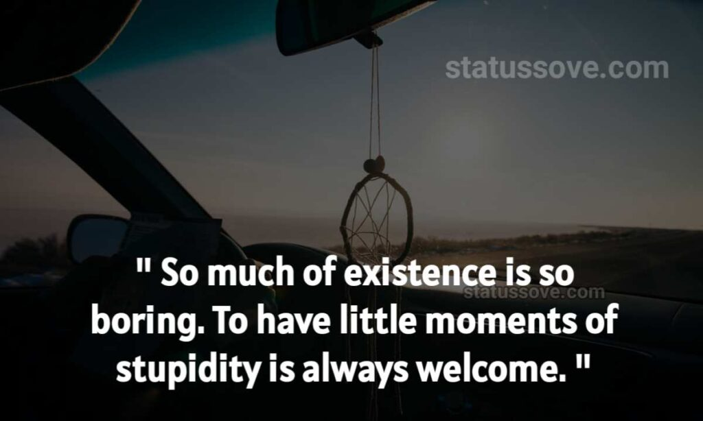 So much of existence is so boring. To have little moments of stupidity is always welcome