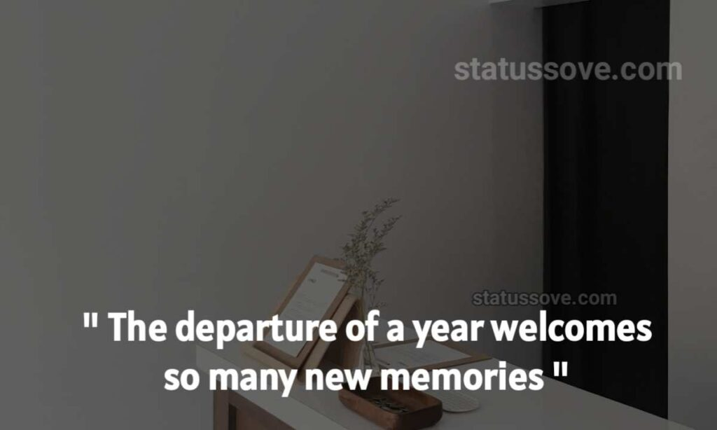 """The departure of a year welcomes so many new memories"""""""